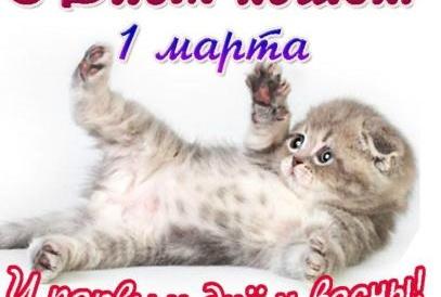 1 МАРТА – Всемирный день кошек.